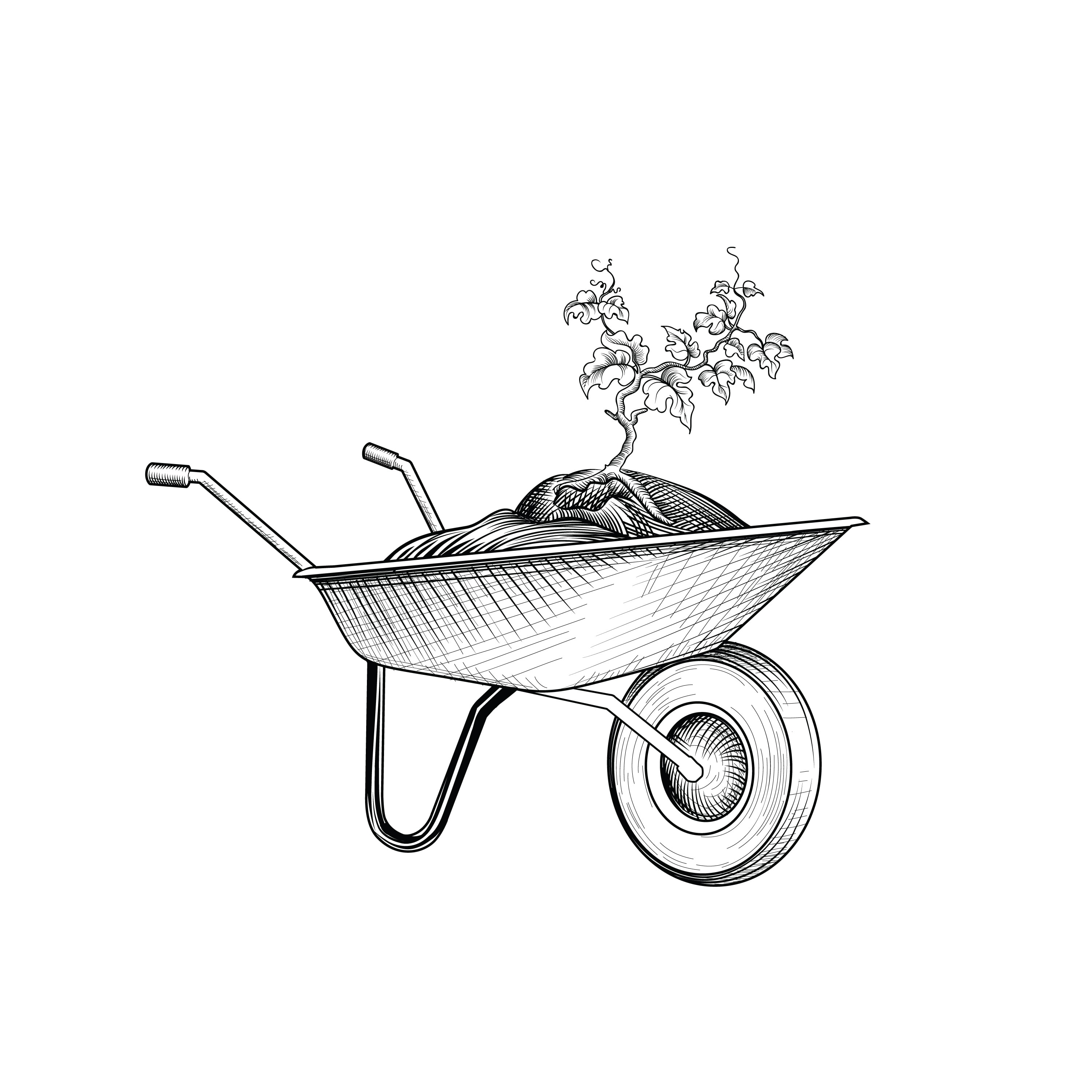 Garden cart with humus and plant. Wheelbarrow engraving. Gardening care sign. Floral bloom stage